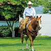 Bill Wittman rides Western at Calumet on May 31, 2006, in Lexington, Ky. <br /> Photo by Anne M. Eberhardt