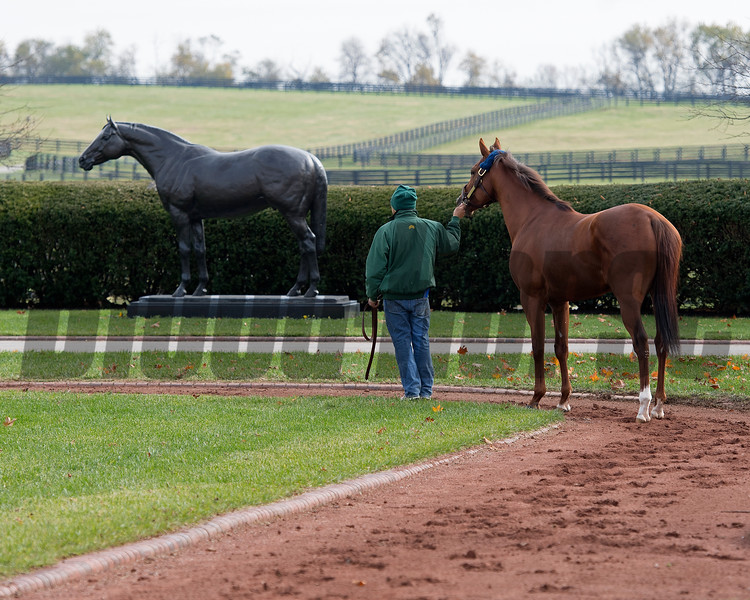 Accelerate stops by the A.P. Indy statue at Lane's End. Stallion open houses in Central Kentucky.