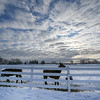 Song Hill Farm in Mechanicville, N.Y. shows the results of the ice and snow storm that hit the Capital District of New York State Friday February 6, 2020. Photo: Skip Dickstein