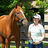 British Idiom with Liz Crow at WinStar Farm on June 16, 2020. Photo: Anne M. Eberhardt