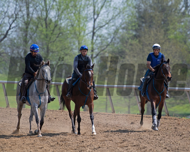 Caption: (L-R): 2018 Frosted o/o Ingenue filly, American Heiress filly, 2018 Paynter o/o Hallie and Beth colt<br /> Training at Silver Springs Training, part of Silver Springs Stud, near Lexington, Ky.,  on April 8, 2020 Silver Springs in Lexington, KY.