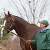 Union Rags at Lane's End. Stallion open houses in Central Kentucky.