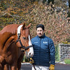Justify at Ashford Stud. Stallion open houses in Central Kentucky.