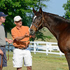 Caption: <br /> Twilight Ridge, 1985 Breeders' C3up Juvenile Filly winner, is now 29 years old and resides at Mike Rutherford's Manchester Farm near Lexington, Ky. The mare was photographed on the farm on June 29, 2012.<br /> TwilightRidgeOrigs 2 image201<br /> Anne M. Eberhardt photo