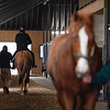 Horse being hotwalked after training, foreground, with rider up and preparing to go train on left. Scenes at Blackwood Stables on<br /> Feb. 25, 2020 Blackwood Stables in Versailles, KY.