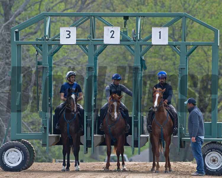 Caption: trainer Kevin Noltemeyer, right, (L-R): <br /> Chasingserendipity filly, Purrfect Love filly,  2018 Midshipman filly out of Showing Home <br /> Training at Silver Springs Training, part of Silver Springs Stud, near Lexington, Ky.,  on April 8, 2020 Silver Springs in Lexington, KY.