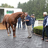 Justify arrives at Ashford Stud. Bob Baffert, right<br /> Keeneland September Sales from Sept. 7 to Sept. 23, 2018. Sept. 17, 2018 Ashford in Versailles, Kentucky.