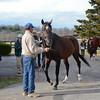 2014 Stallion Show at Crestwood Farm scenics<br /> photosbyz.com