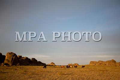 """2016 оны Аравдугаар сарын 01.  """"Их нарт"""" байгалийн нөөц газар Дорноговь аймгийн баруун хойд хэсэгт Айраг, Даланжаргалан сумын заагт 43 мянган га газрыг хамран оршдог. Нартын хад нь говийн аргалийн байршил нутгийн хамгийн зүүн хойд хил учир 1996 онд хамгаалалтад авсан юм.   ГЭРЭЛ ЗУРГИЙГ Б.БЯМБА-ОЧИР/MPA"""