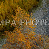 MPA PHOTO 2016-6555