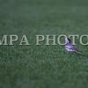 MPA PHOTO 2016-4436