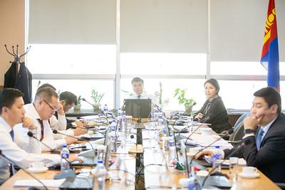 """2019 оны аравдугаар сарын 19. Нийслэлийн Засаг даргын зөвлөлийн хуралдаан өнөөдөр болж байна. Зөвлөлийн хуралдаанд 2019 онд улс, нийслэлийн төсөв, орон нутгийн хөгжлийн сангийн хөрөнгөөр нийслэлд хэрэгжиж байгаа ажлуудын ажлын явцын талаарх танилцуулгыг сонслоо. Танилцуулгыг нийслэлийн Хяналт шинжилгээ үнэлгээний хэлтсийн дарга Х.Гантулга хийлээ. Нийслэлийн хэмжээнд 2019 оны байдлаар НИТХ-ын тогтоолоор батлагдсан нийт 30 дэд хөтөлбөр хэрэгжиж байна. Хэрэгжиж байгаа 30 дэд хөтөлбөрийн 162 зорилтын 890 арга хэмжээний хэрэгжилтийг нийслэлийн нутгийн захиргааны 26 байгууллага хангаж ажилласан байна.    нийслэлийн Хяналт шинжилгээ үнэлгээний хэлтсийн дарга Х.Гантулга """"2019 оны есдүгээр сарын 20-ны өдрийн байдлаар улс, нийслэлийн хөрөнгө оруулалт болон орон нутгийн хөгжлийн сангийн хөрөнгөөр 995 төсөл, арга хэмжээний худалдан авах ажиллагааны ажлын явц 82,7 хувьтай байна.Улсын төсвийн хөрөнгө оруулалтаар зураг төсөвгүй 86, газаргүй гэх шалтгаанаар 34 төслийн ажил удааширсан байна. Нийслэлийн төсвийн хөрөнгөөр зураг төсөвгүй 247, байршил тодорхой бус 3, орон нутгийн хөгжлийн сангийн хөрөнгөөр зураг төсөвгүй 174, газаргүй 1, байршил тодорхойлох 50 төсөл арга хэмжээ удаашралтай байна"""" гэлээ.  Хөрөнгө оруулалтын ажлууд удаашралтай байгаа шалтгаан нь газрын асуудал шийдвэрлэгдээгүй, зураг төсөв, ажлын даалгавар бэлэн болоогүй зэрэг бэлтгэл ажил дутуу хангасан зэрэг шалтгаанаас хамаарч төсөл арга хэмжээнүүд удаашралтай байгаа талаар мөн мэдээллээ.  Хотын Захирагч С.Амарсайхан улсын болон нийслэлийн төсвийн хөрөнгөөр хийгдэж байгаа төсөл арга хэмжээнүүдийг цаг тухайд нь хэрэгжүүлэх, ажлын явцыг эрчимжүүлэхийг холбогдох албаныханд үүрэг болголоо.ГЭРЭЛ ЗУРГИЙГ Б.БЯМБА-ОЧИР/MPA"""