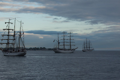 Dewaruci, Cuauhtemoc of Mexico, and Cisne Branco of Brazil.