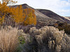 Yakima Canyon autumn<br /> Yakima River Canyon, Washington<br /> <br /> 02-231