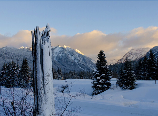 Snoqualmie Winter #2<br /> Snoqualmie Pass, Washington<br /> <br /> 02-256