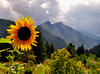 View from Harriet's garden<br /> Leavenworth, Washington<br /> <br /> 02-255