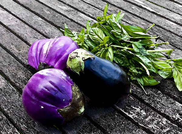 Eggplant with fresh basil<br /> <br /> 02-228