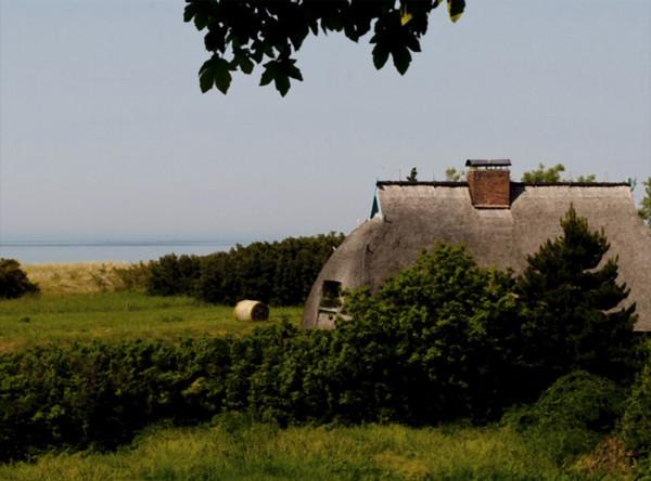 Farmstead with thatch<br /> Baltic coast, Germany<br /> <br /> 02*241
