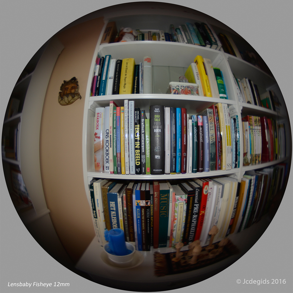 Circle_around_fisheye_picture_square_4432c_JD_LEO1216HE