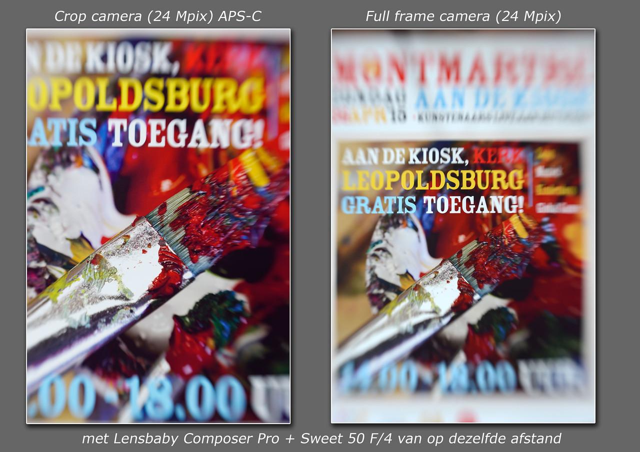 Vergelijking_full frame en crop camera_APS-C_1