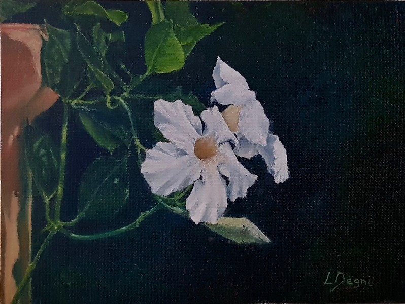 """The White Flowers"" (oil on canvas) by Louis Degni"