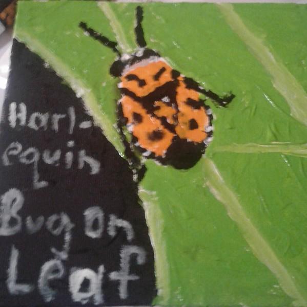 """""""Harlequin Bug On A Leaf"""" (acrylic) by David Rubin"""