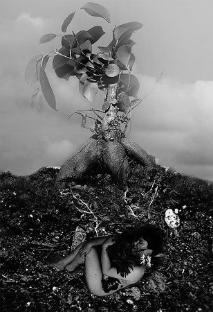 """Reborn"" (photography) by Gaby Alatorre"