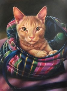 """""""The Bargain Hunter"""" (colored pencil) by Nathalie Beck"""