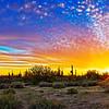 Sunset in North Scottsdale, Arizona with saguaro cactus.