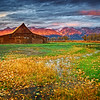 Grand Teton National Park during fall foliage in Moose, Wyoming, at barns along Mormon Row and Antelope Flats RD at T.A. Moulton Barn for sunrise with clouds.