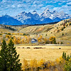 Grand Teton National Park during fall foliage in Moose, Wyoming, at overlook above horse ranch Gros Ventre River Ranch along Gros Ventre RD E of Lower Gros Ventre RD