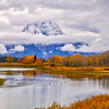 Clouds hide Mt Moran at Oxbow Bend along the Snake River at Grand Teton National Park in Wyoming during fall foliage.