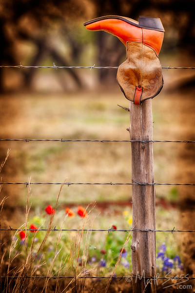 """""""Retired Boot"""" - Texas Hill Country"""