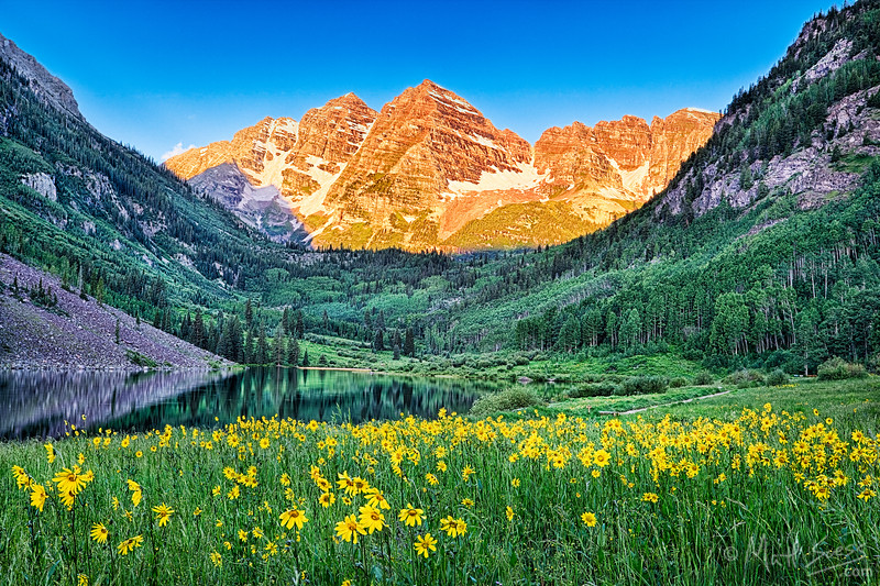 Maroon Bells with Summer Flowers - Colorado