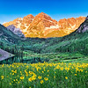 Maroon Bells with Summer Flowers - Colorado