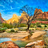 The Three Patriarchs at sunrise along the Virgin River in Zion National Park in Utah during fall foliage.