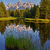 Sunrise at the Grand Tetons National Park in Wyoming with water reflection at Schwabacher Road along the Snake River.