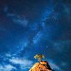 """Pinyon Tree and Milky Way"" - Zion National Park - Utah"