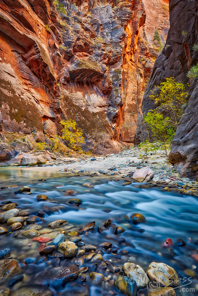 The Narrows in Zion National Park along the Virgin River in Utah