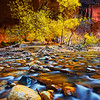 """Chromatic Enchantment"" - Zion Natinal Park, Utah"