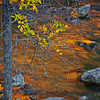 Sunlight reflecting off a canyon wall provides the color in the Virgin River in Zion National Park, Utah in the fall.