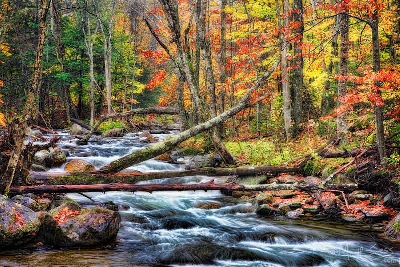 Fall foliage along a river in Central Vermont.
