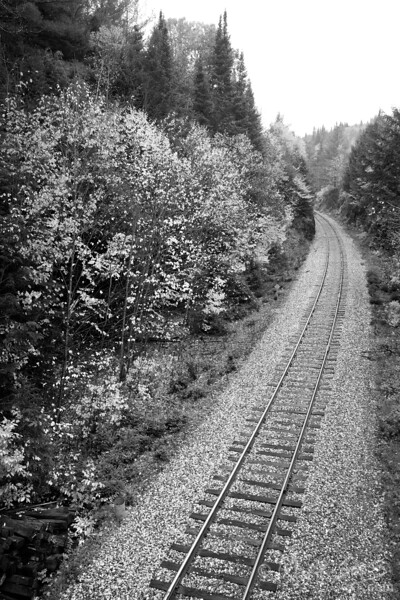 Fall foliage along railroad tracks in Central Vermont.