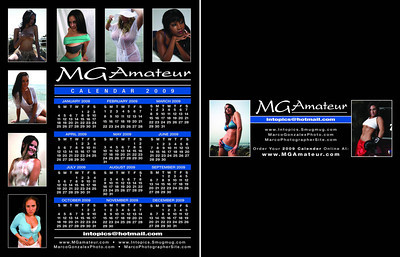 2009 Flyer