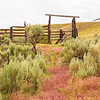 This old corral was used back in the day to hold Wild Horses on roundup day. On a ranch in NW Wyoming <br /> July 3, 2019
