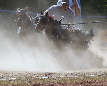 The Ponies Dig In