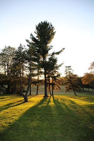 Sundown on Noden Reed