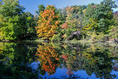 Reflections in the Windsor Locks Canal