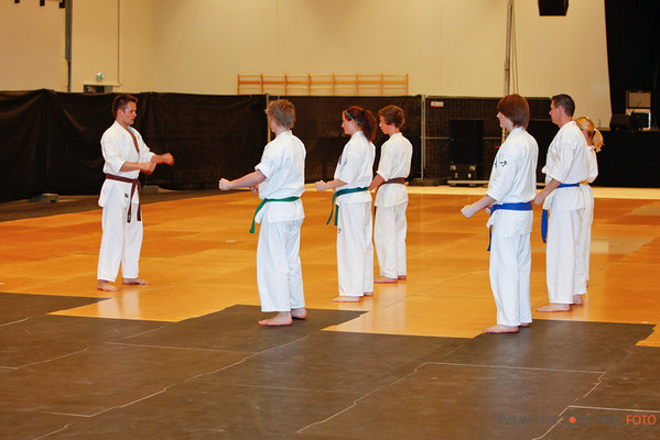 Karateoppvisning