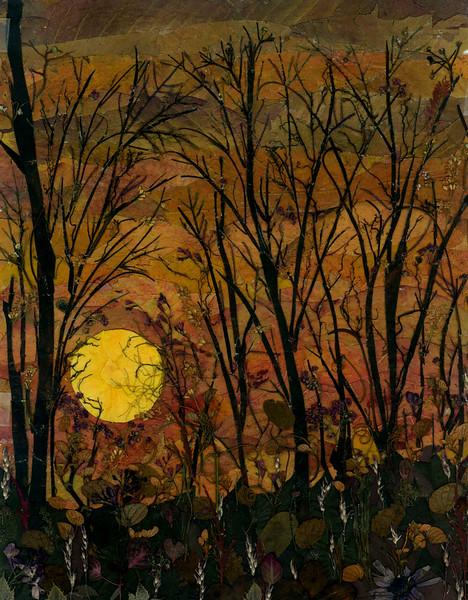 """Sunrise/Sunset"" (pressed plant material) by Simona Aizicovici"